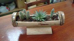 Resultado de imagen de suculentas en bambu Bamboo Planter, Bamboo Wall, Bamboo Garden, Indoor Garden, Indoor Plants, Planters, Succulent Gardening, Succulents Garden, Bahay Kubo
