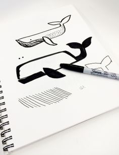 #Fossil sketch of our modern whale for Summer 2014