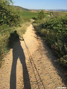 Road to Estella #Camino2015 july McG