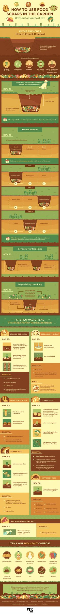 Trench composting is a great alternative for people who don't want to have a large bin in their backyard. This infographic will show you how trench composting your food scraps will help your garden flourish.