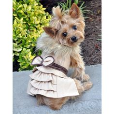Wool w Triple Button Faux Leather Neck Detail by Pooch Pie Collection size Medium Dog Coat