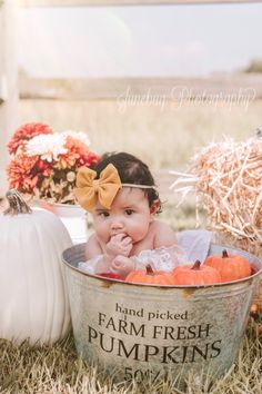 Milk bath Photography Milk Bath Photography Milk bath P… – Unique Baby Bathing Milk Bath Photography, Baby Girl Photography, Fall Baby Photos, Fall Pics, Baby Milk Bath, Milk Bath Photos, Ohio, Fall Mini Sessions, Foto Baby