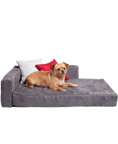 Suede Pet Couch (Great price too!!)