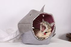 Cat Ball for Shark Week a Unique Cat Bed by TheCatBall on Etsy