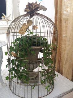 Blossoms Vintage Chic: The Vintage Marketplace at The Oaks Birdcage Planter, Birdcage Decor, Antique Bird Cages, Decorative Bird Cages, Vintage Marketplace, Vintage Birds, Metal Wall Decor, Home Decor Accessories, Metal Walls