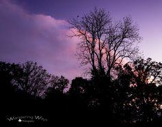 Merom Bluff Indiana   Wandering Ways Photography   Amy 2016
