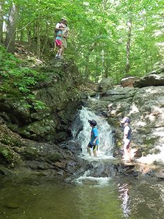 Five cool hikes to Maryland waterfalls....if we can ever get Abby to walk without whining