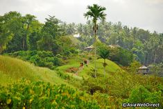 Campuhan Ridge Walk is a free and easy nature trek, popular among repeat visitors to the central highland town of Ubud. The area provides a great retreat from the more hectic southern parts of the island, but this trail presents an even more pristine outback to escape from the