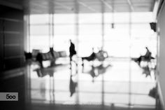 Airport Terminal Silhouettes by Christoph Oberschneider on