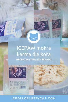"""Zaciekawiona zapewnieniami producenta, że Icepaw to """"kompletna mokra karma dla kotów składająca się w 100% z filetów ryb"""", postanowiłam ją kupić i przetestować. Jak karma wypada po dogłębnej analizie? Karma, Blog, Blogging"""