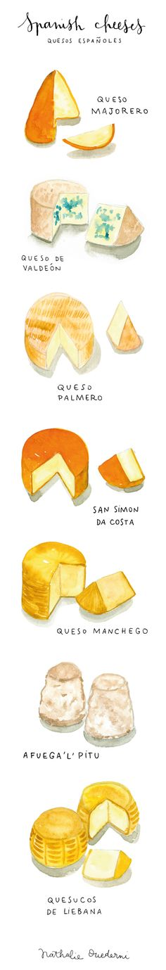 Watercolor food illustration | Spanish cheeses by Nathalie Ouederni | www.studiokalumi.com