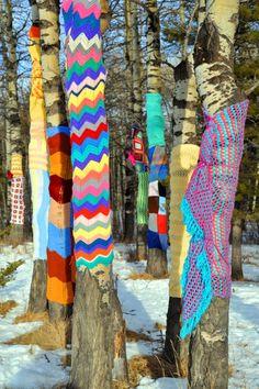 yarn bombed trees - coming soon to a tree near you