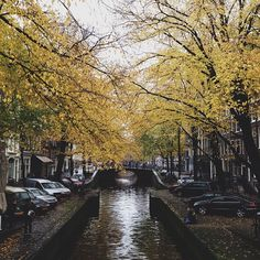 "Alan Jensen - ""Amsterdam turned on the charm today!"" #amsterdam #herfst"