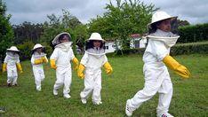 Apípolis, en Pontevedra. Muchos escolares se acercaron este año a este centro pontevedrés, ideado para que los más pequeños comprendan la relación de los humanos con las abejas. Las familias, en grupos organizados, podrán visitar su exposición interactiva o reservar alguna actividad, entre las que se incluyen una visita al apiario o una aproximación (participativa) al procesado de la miel y la cera.