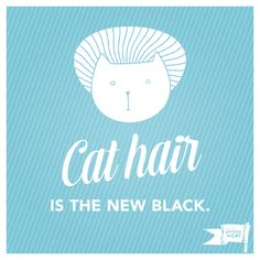 Cat hair is everywhere in your house and on your clothes, so let it be the new black. #cats #fashion #hair