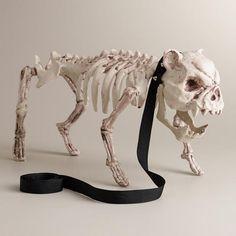 Skeleton Dog - World Market
