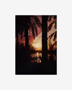 Untitled (Sunsets Series) : THOMAS GALLER peace