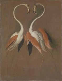 Two Flamingos Face to Face, 1692-1693, oil on canvas  François Desportes (1661-1743)  Sèvres, Cité de la céramique