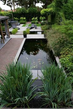 Sectioning your backyard Back Gardens, Small Gardens, Outdoor Gardens, Water Features In The Garden, Garden Features, Pond Design, Landscape Design, Modern Landscaping, Backyard Landscaping