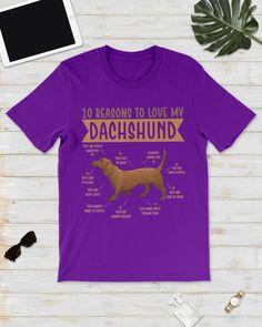 10 Reasons To Love Dachshund Best Dog - Purple dapple dachshund puppy, cuddly puppy, morkie puppy #dogtoys #sausagedog #dogsofinstagram, dried orange slices, yule decorations, scandinavian christmas Dapple Dachshund Miniature, Dapple Dachshund Puppy, Dachshund Puppies For Sale, Baby Dachshund, Dachshund Shirt, Funny Dachshund, Cream Dachshund, Dachshund Rescue, Daschund