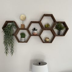 Set of Six / Classic Hexagon Duo/ Hexagon Shelves Hexagon Shelf Bee Decor Honeycomb Shelf Honeycomb Shelves Nursery Decor Beehive Floating Honeycomb Shelves, Hexagon Shelves, Bee Honeycomb, Home Living, Living Room Decor, Bedroom Decor, Nursery Decor, Shelves In Bedroom, Wall Shelves