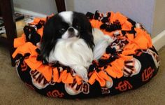 SF Giants dog bed