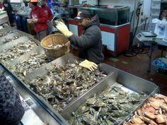 Seafood Wharf on the Potomac,  Washington,  D.C.