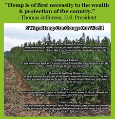 Hemp and it's many uses. Hemp Recipe, Marijuana Recipes, Environmental Studies, American Medical Association, Energy Conservation, Paper Companies, Making Excuses, Environmentalist, Hemp