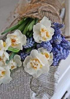 16 Flowers with Special Meaning for Girls to Identify with  ... →…