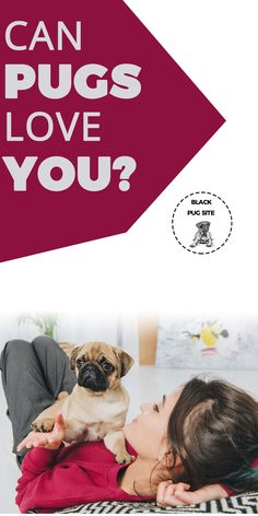 Do dogs love you? Ways to tell your dog. Pug Facts, Old Pug, Fawn Pug, Baby Pugs, Black Pug, Different Dogs, Kinds Of Dogs, Healthy Pets, Really Love You