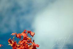 Glücksmomente: Himmlischer Herbst