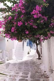 Image result for mykonos streets