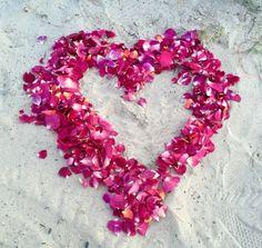 Proposal Ideas by Flyboy Naturals Rose Petals – Love and Marij Rose Petals Wedding, Beach Wedding Inspiration, Romantic Evening, Wedding Goals, Color Blending, Peonies, Wedding Ceremony, Lilac, Floral Design