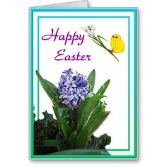 Happy Easter - Chick and Purple Hyacinth Card