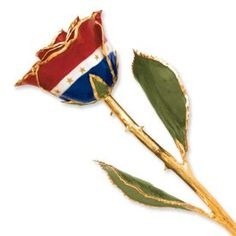 Long Stem Dipped 24K Gold Trim Patriotic Liberty Genuine Rose In Gift Box >>> Check this awesome product by going to the link at the image.