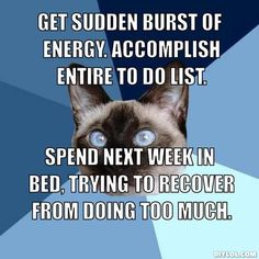Image from http://assets.diylol.com/hfs/c44/78b/e95/resized/chronic-illness-cat-meme-generator-get-sudden-burst-of-energy-accomplish-entire-to-do-list-spend-next-week-in-bed-trying-to-recover-from-doing-too-much-629ff5.jpg.