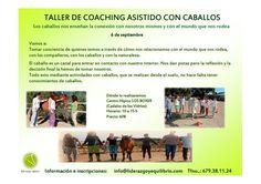 6 DE SEPTIEMBRE – Taller de Coaching Asistido con Caballos Los caballos nos enseñan la conexión con nosotros mismos y con el mundo que nos rodea.