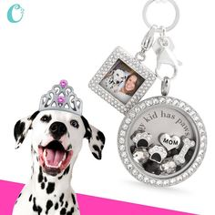 Four-Legged Doggy Origami Owl Living Locket available at StoriedCharms.com
