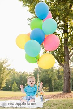birthday boy! red apple tree photography: Twins First Year