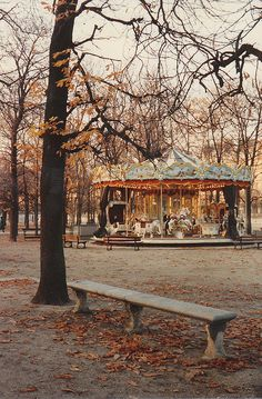Jardin Tuileries Carousel in autumn. #Paris