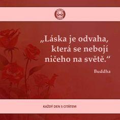 Láska je odvaha, která se nebojí ničeho na světě | citáty o lásce Buddha, Mindfulness, Quotes, Quotations, Consciousness, Quote, Shut Up Quotes