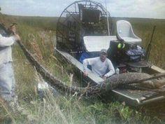 Big snake