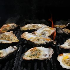 There's not much better than Grilled Oysters on the Half Shell. Serve them with crusty French bread for soaking up the garlicky, buttery goodness. Bbq Oysters, Grilled Oysters, Grilled Seafood, Fish And Seafood, Seafood Dishes, Seafood Recipes, Grilling Recipes, Cooking Recipes, Grilling Ideas