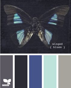Dark gray, navy, blue, sea glass, medium gray. A lighter navy. a lighter blue, and a more minty green color. With maybe aqua, teal, or bright green