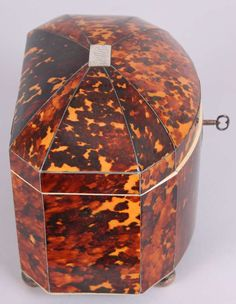 Fine Regency period tortoise-shell bow-fronted double tea-caddy 6