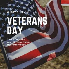 Holidays In United States, Veterans Day Photos, Veterans Administration, Armistice Day, Federal Holiday, What Day Is It, I Love My Dad, American Veterans, We The People