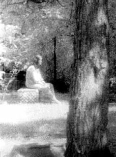 The Madonna of Bachelor's Grove Ghost |Top 10 Most Famous Ghost Pictures Ever Taken