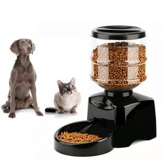 Electronic 5.5 Liter Large Automatic Feeder Portion Control, Electric Pet Dry Food Container with LCD Display for Dogs Cats