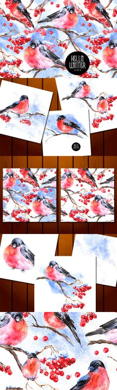 Winter Watercolor with Bullfinches and Rowan Branch on Behance
