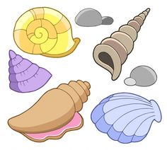 A seashell or sea shell, also known simply as a shell, is a hard, protective outer layer created by an animal that lives in the sea. Description from pixgood.com. I searched for this on bing.com/images